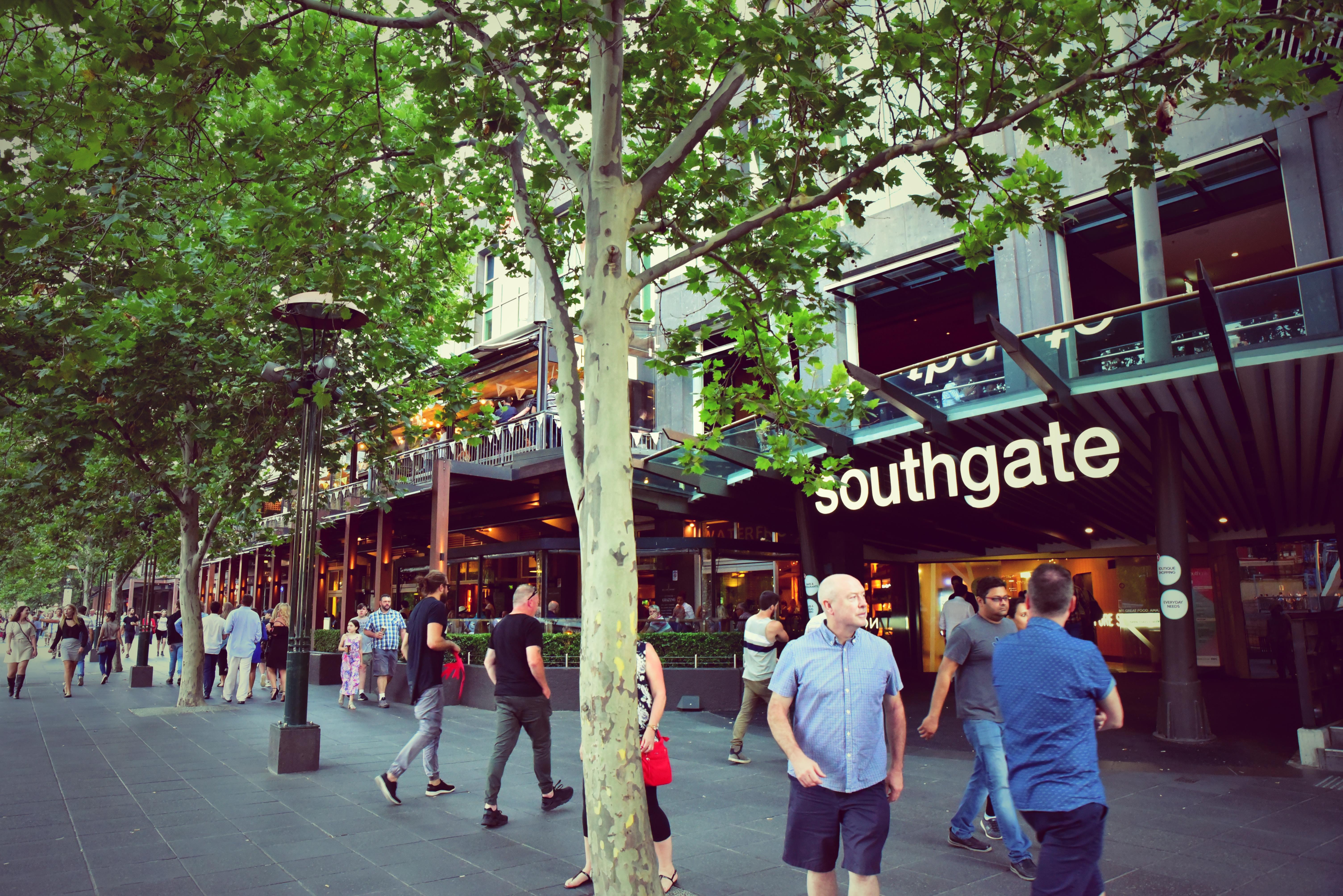 southgate2